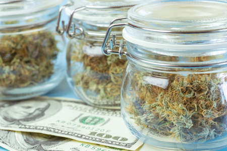 Close up of medical or recreational cannabis in jars, money on blue background. Marijuana farming business. Foto de archivo