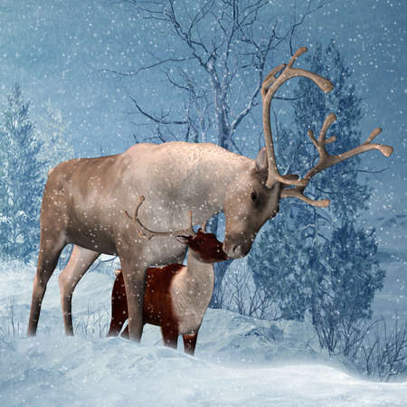solstice: Reindeer and Fawn Winter Greeting Card