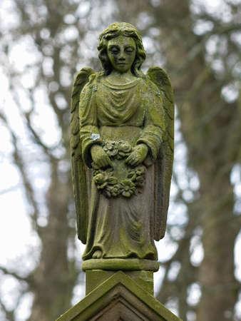 weeping angel: Stone Angel