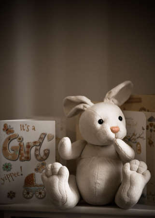 New Baby Girl Cards and Rabbit Celebration