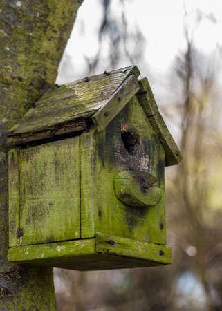An Old Wooden Bird House