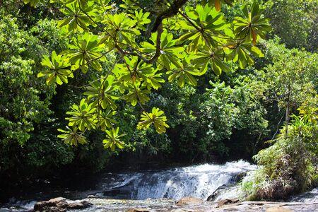 palau: waterfall in palau Stock Photo