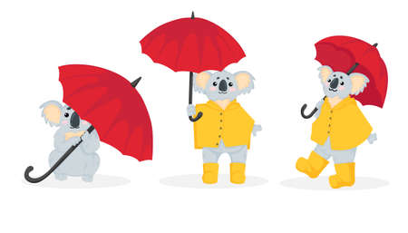 Hand drawn vector collection of illustration of a little koala bear in yellow raincoat and rubber boots walking under an red umbrella in cartoons style. Stock image isolated on white background. Set of a cute koala with umbrella.