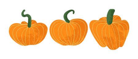 Set of pumpkins isolated on white background. Vectors pumpkins icons in flat cartoons style with texture. Elements for your design works. Halloween and Thanksgiving Day symbol. Ilustração