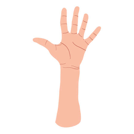Hand showing five fingers, high five sign. Communication gestures concept. Vector flat design in cartoon style. Isolated on white background.