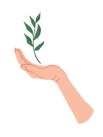 Hand holding a green branch plant. Sprout in Palm. Vector flat design in cartoon style. Isolated on white background. Ilustração