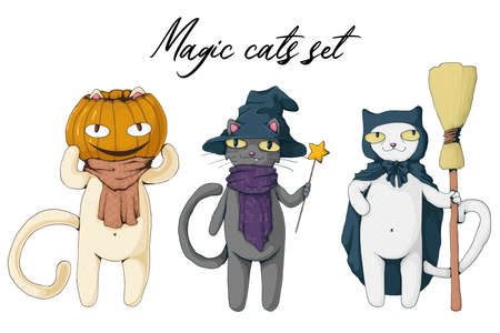 Collection of white and black magic cat with witch hat, pumpkin and broom. Set of halloween characters. Vector cartoon illustration. Best for print, web and textile design. Stock Illustratie