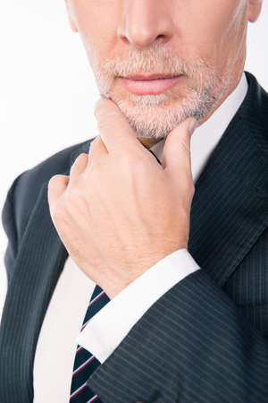 gray beard: intelligent businessman with gray beard ponders putting his hand on chin Stock Photo