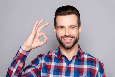 A handsome man in checkered shirt isolated on gray background showing ok sign