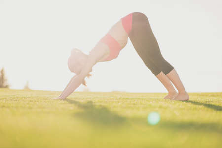Young woman in pink top and black sport wear, with tail, barefoot is practicing yoga in beautiful nature. Stock Photo