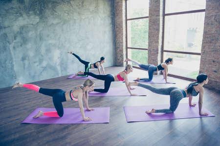 Goede morgen. Vijf jonge sportvrouwen rekken zich in moderne studio op purpere matten uit. Vrijheid, kalmte, harmonie en ontspanning, het concept van het vrouwengeluk Stockfoto