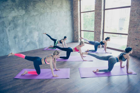 Grande manhã. Cinco jovens mulheres esportivas estão se estendendo no estúdio moderno em tapetes roxos. Liberdade, calma, harmonia e relaxamento, conceito de felicidade feminina Foto de archivo - 86357322