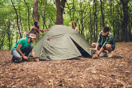Four young cheerful best friends are setting up a tent in forest, on a fallen brown leaves, team work, help, fun together