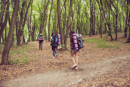 Adventures, here we come! Rear view of three tourists walking in the forest, one after each other, all having backpacks, mates, tey turn from a trial inside to a wild forest