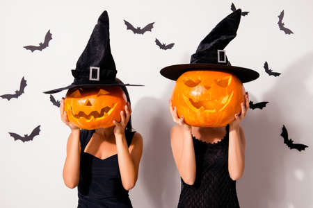 Two huge carved handmade cutted decorative pumpkins instead oh heads of wizards, in black long caps, spooky smiles, in dark dresses, on white wall`s background with scary small creatures vampires