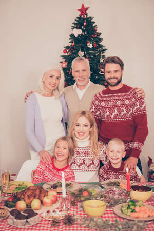 granny and grandad: Six cheerful relatives, setted festive desktop, full of yummy treats, married couples, siblings, grandad, granny, in knitted traditional x mas costumes, pine firtree, decorated room, christmastime Stock Photo