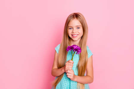 Portrait of cute sweet charming girl in blue holiday dress, she is holding three purple flowers, isolated on pink background, copyspace