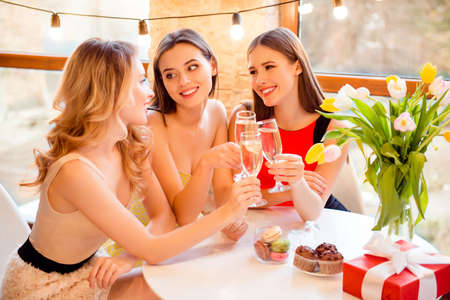 Three pretty, nice, attractive two girls listening their friend while she saying toast, holding with hands, clinking glasses with champagne, wine, alcohol, beverage Stockfoto