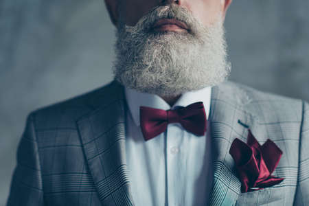 Cropped close up photo of grey-haired luxurious trendy detailed mans beard, dressed in checkered jacket vinous bow-tie, pocket tissue, drecc-code, wealthy chic elegant man isolated on gray background
