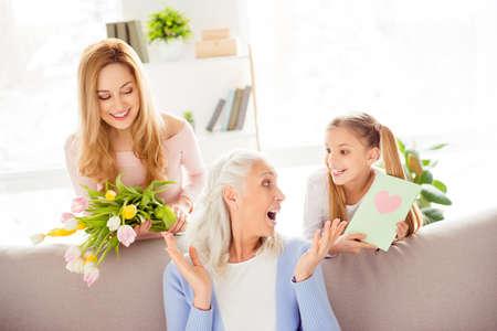 Felicidad de la felicidad de la felicidad de la felicidad de la alegría de la alegría de la manera del concepto de la abuela de la abuela . muy agradable bastante alegre del hombre de la abuela del encanto del juego de la abuela Foto de archivo - 94039709