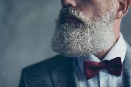 Cropped half-turned close up photo of grey groomed chic volume lush long elegant hipster curly trendy elite old man's beard