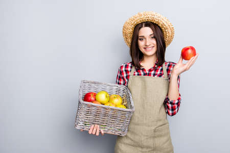 Care fall fun checkered shirt casual straw hay tree buy seller gourmet people person concept. Portrait of glad friendly girl holding carrying  box with ripe fresh big apples isolated gray background