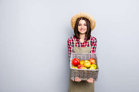 Fruit tree pick buy present show demonstrate market checkered shirt straw hay people person concept. Portrait of kind friendly lady offering to try taste apple isolated on gray background copyspace Stockfoto