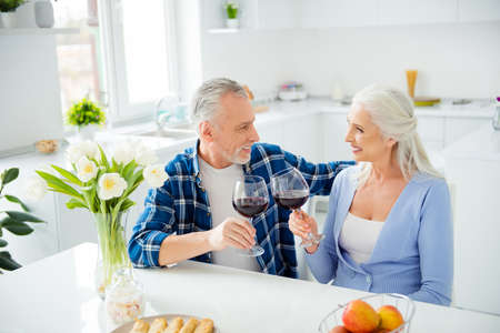 Portrait of lovely cheerful stylish attractive romantic couple sitting in the kitchen clinking glasses with alcohol red wine looking at each other enjoying time together