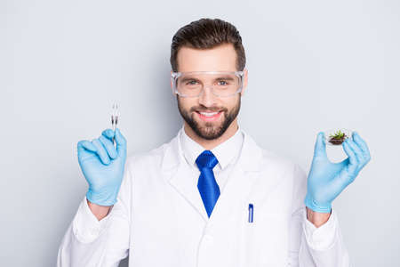 Portrait of attractive biologist in white outfit with tie, showing having forceps and vial with field and small plant, going to make expertising, inspection, isolated on grey background Stock Photo