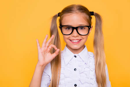 Fun joy enjoy like advert people person concept. Close up studio photo portrait of cute sweet lovely adorable cheerful with toothy smile girl making ok symbol isolated vivid shine background 写真素材