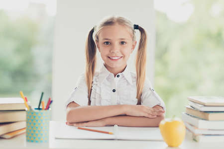 Back to school concept. Close up photo portrait of pretty sweet clever lovely dreamy stylish cute with toothy beaming smile pigtails blonde hair sitting at desk looking at camera