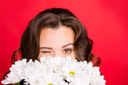 Close-up cropped portrait of nice cute lovely attractive coquettish cheerful wavy-haired girl hiding holding smelling white summer flowers isolated over bright vivid shine red background Reklamní fotografie