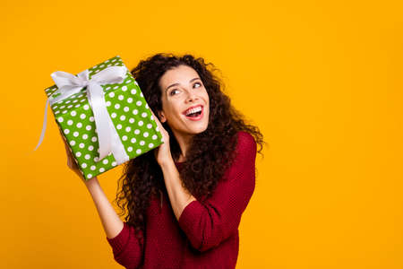 Close up photo beautiful cheerful amazing she lady holding large package amazed expression maybe cat dog pet inside wearing red knitted sweater pullover clothes outfit isolated yellow background.