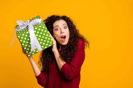 Close up photo beautiful cheerful amazing she lady hold large package amazed wonder maybe cat dog pet inside wearing red knitted sweater pullover clothes outfit isolated yellow background.