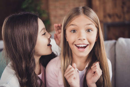 Close-up portrait of two nice sweet attractive charming curious cheerful cheery crazy excited ecstatic funny girls sharing secrets dream news in house loft industrial interior style Banco de Imagens
