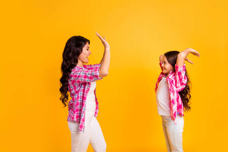 Profile side view portrait of nice attractive lovely cheerful positive optimistic wavy-haired girls wearing checked shirt clapping palms cool yes isolated over bright vivid shine yellow background