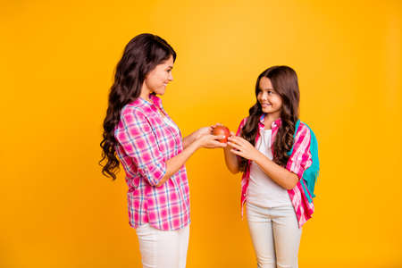 Close up side profile photo beautiful two people she her models ladies mom small daughter giving red apple study time see you soon wear casual pink checkered plaid shirts isolated yellow background