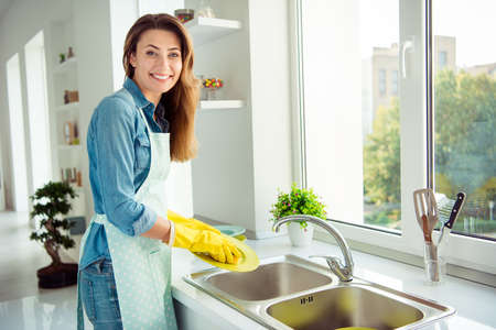Profile side view portrait of her se nice lovely attractive experienced professional cheerful positive brown-haired lady doing dishes in sink daily every day in light white interior style kitchen Archivio Fotografico