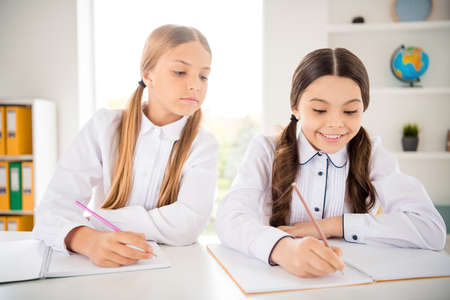 Portrait of two person nice-looking attractive lovely sweet charming cute smart clever cheerful girls doing homework subject dictation native language in light white interior class room indoors