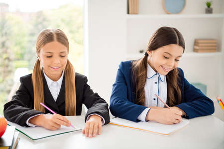 Portrait of two person nice attractive lovely winsome charming cute cheerful cheery smart clever girls doing home work dictation Maths in light white interior class room indoors Stock Photo
