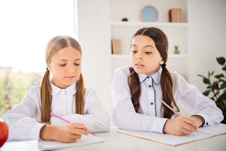 Portrait of two person nice attractive lovely sweet charming cute intelligent focused girls doing home work dictation native language in light white interior class room indoors
