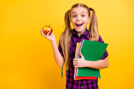 Close up photo of little lady diligent pupil copybooks hands apple lunchtime wear casual checkered shirt isolated yellow background