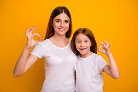 Portrait of two nice attractive content cheerful cheery satisfied positive person showing ok-sign ad advert agree advice isolated over bright vivid shine yellow background Stock Photo