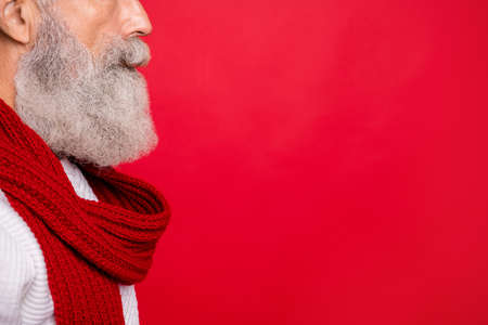 Cropped close-up profile side view portrait of his he nice attractive well-groomed calm gray-haired man grandpa copyspace isolated over bright vivid shine red background Stock fotó