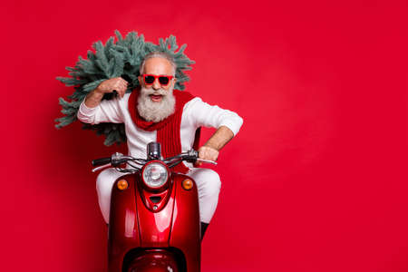 Portrait of cheerful pensioner carrying fir tree having eyeglasses eyewear drive bike wearing white jumper isolated over red background