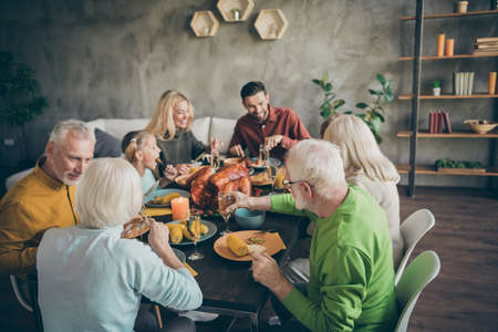 Portrait of nice idyllic cheerful big full family couples eating domestic tasty yummy meal dishes feast gratefulness gathering tradition atmosphere season modern loft industrial style interior house