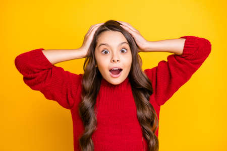 Portrait of shocked astonished kid hear listen incredible information stare stupor touch her head scream wow omg unbelievable wear good look pullover isolated over bright color background