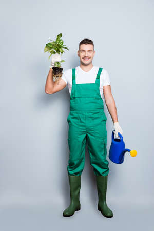 I will save your plant. Full size vertical photo of nice strong arms man hold watering, can fresh plant changing pot wear green overall gumboot isolated grey background Stock Photo