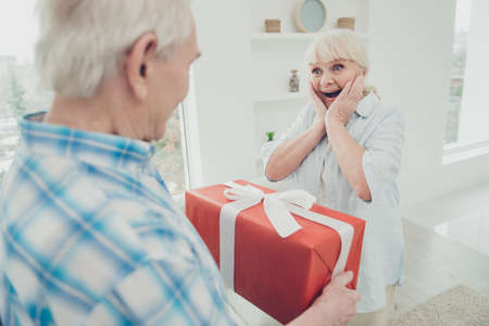 Portrait of her she his he two nice attractive lovely cheerful cheery glad positive people granny receiving great big large romantic gift from grandpa in light white interior living-room house Banco de Imagens