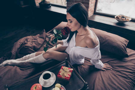 Portrait of her she nice attractive charming lovely pretty sweet sensual dreamy girl sitting on bed smelling fresh red rose enjoying snack at industrial brick wood loft modern interior style house